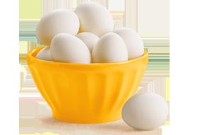 سعر البيض الابيض اليوم في بورصة بيض الحمامي