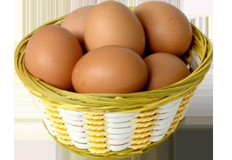 سعر البيض الأحمر اليوم في بورصة البيض المصرية الرئيسية